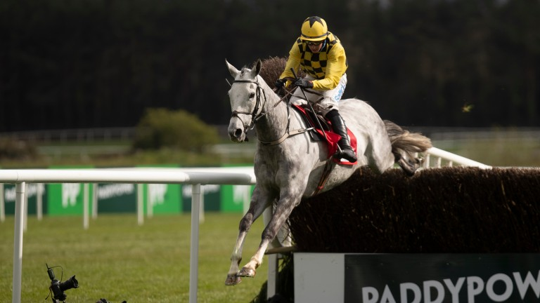 Asterion Forlonge: back to his best in the novice handicap chase