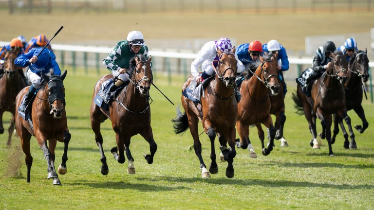 Master Of The Seas (left) and Lucky Vega (green and white) could renew rivalry at the Curragh on Saturday