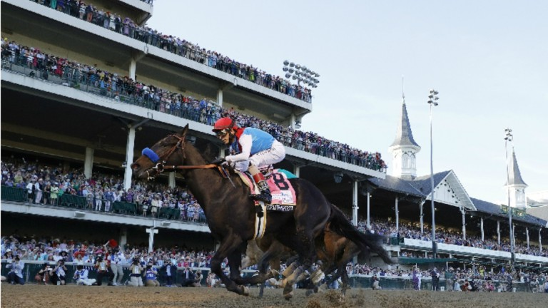Medina Spirit: first past the post in this year's Kentucky Derby