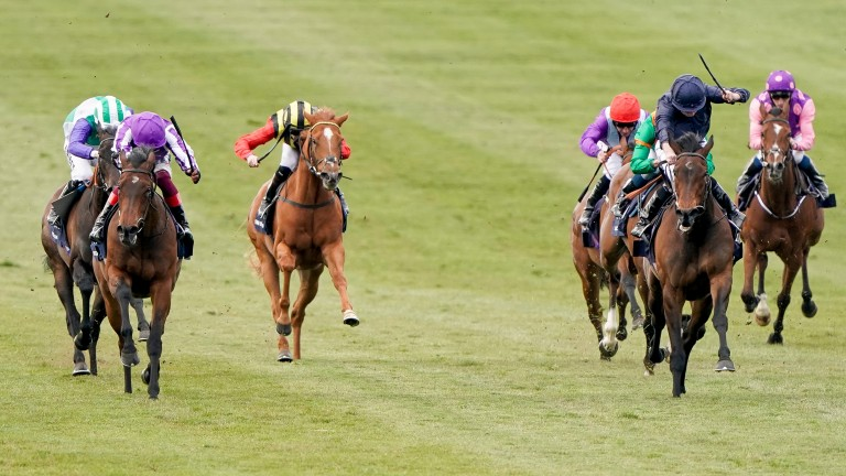 Santa Barbara (dark navy blue silks) finishes fourth in the 1,000 Guineas at Newmarket last month