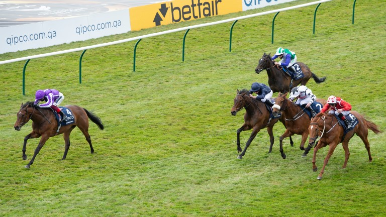 Mother Earth (in front): could be heading for the Irish 1,000 Guineas next