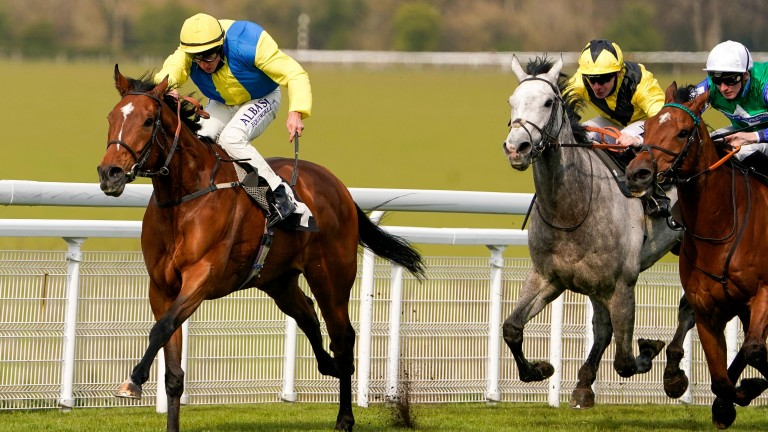 Solar Screen (grey) stuck on from the rear to finish third at Goodwood