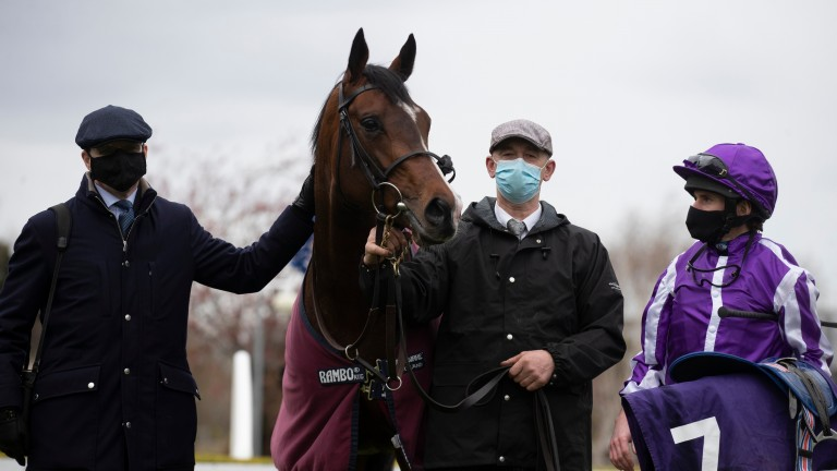 Sir Lamorak: heads a team of three for Aidan O'Brien in the Chester Vase on Wednesday