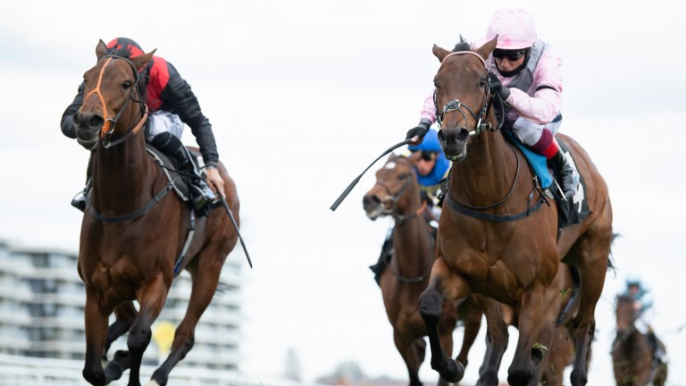 Darlectable You (right) will bid to follow in some Gosden-trained superstar footsteps in the Cheshire Oaks