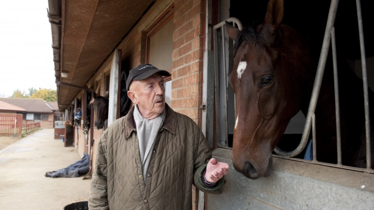 Barney Curley pictured with Sereth at his stables