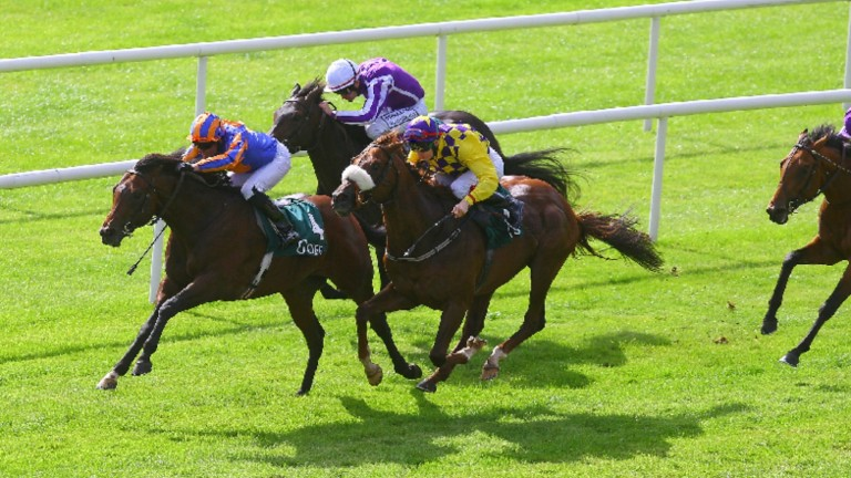 Power won two Group 1s for Aidan O'Brien, the National Stakes and Irish Guineas