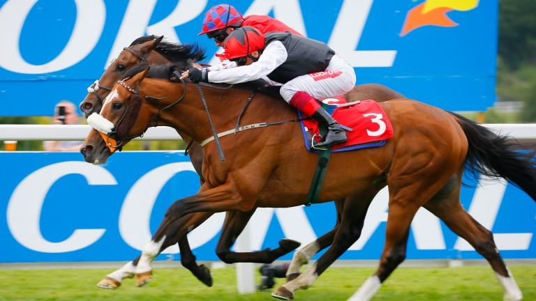 Frankie Dettori got the best out of Falcon Eight at Sandown in 2019