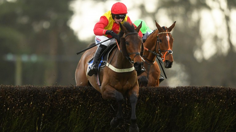 Christmas in April: first win since February last year for Colin Tizzard