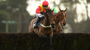 Christmas in April ridden by Harry Cobden winning the Devon National Handicap Chase at Exeter Racecourse on February 21, 2020