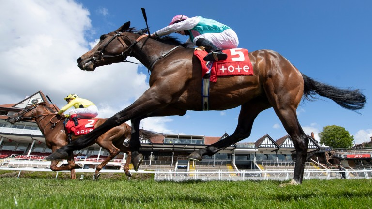 El Drama (far) lands the Dee Stakes from Maximal