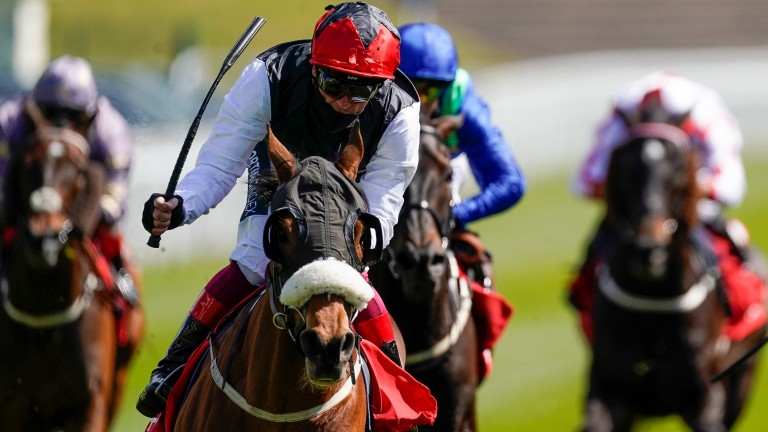 Falcon Eight: Dermot Weld is concerned about really testing ground for the Chester Cup winner