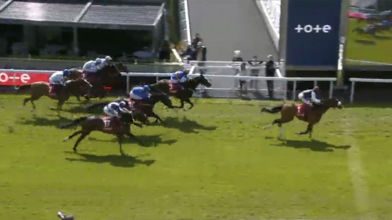 The pair cross the line, with Dettori and Falcon Eight sealing victory for Dermot Weld