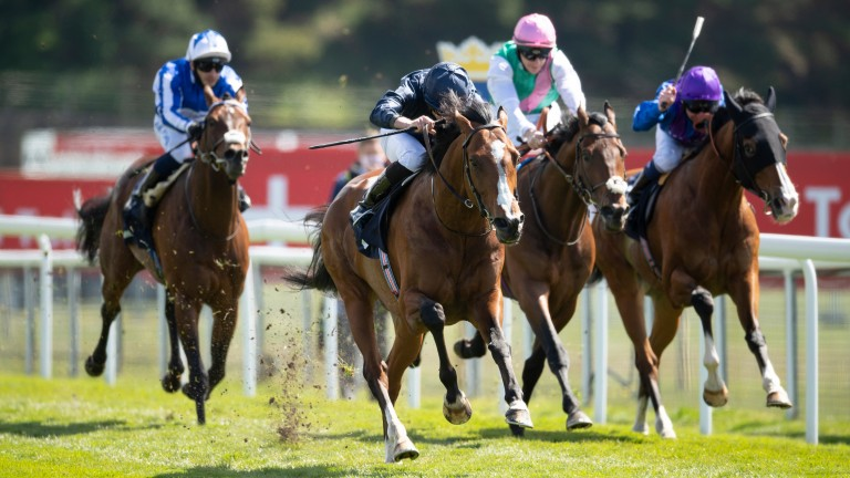 Armory (Ryan Moore,2nd left) win the Huxley StakesChester 7.5.21 pic: Edward Whitaker/Racing Post