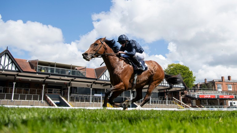 """Aidan O'Brien on Armory: """"We were delighted with what he did at Chester"""""""