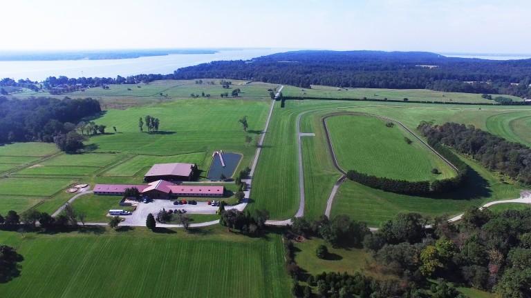 The 40-box barn and training gallop at Tapeta Farm