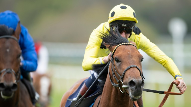 David Egan was aboard the Third Realm in the Lingfield Derby Trial but successful rider Andrea Atzeni takes over at Epsom