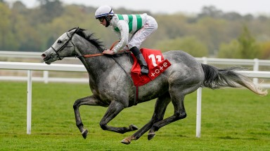 ASCOT, ENGLAND - MAY 08: Rossa Ryan riding Albaflora easily win The tote+ Pays More At tote.co.uk Buckhounds Stakes at Ascot Racecourse on May 08, 2021 in Ascot, England. Only owners are allowed to attend the meeting but the public must wait until further