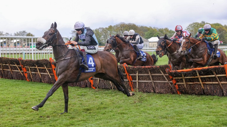Copperless starts to assert his dominance in the Swinton Hurdle