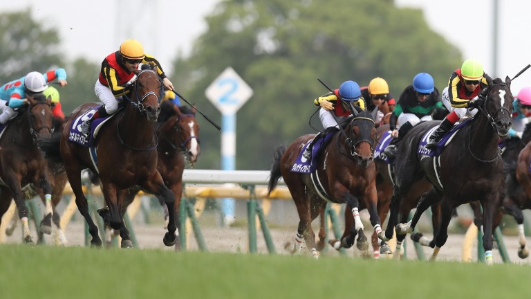 Schnell Meister (dark yellow cap, left) came with a late challenge to take the NHK Mile Cup
