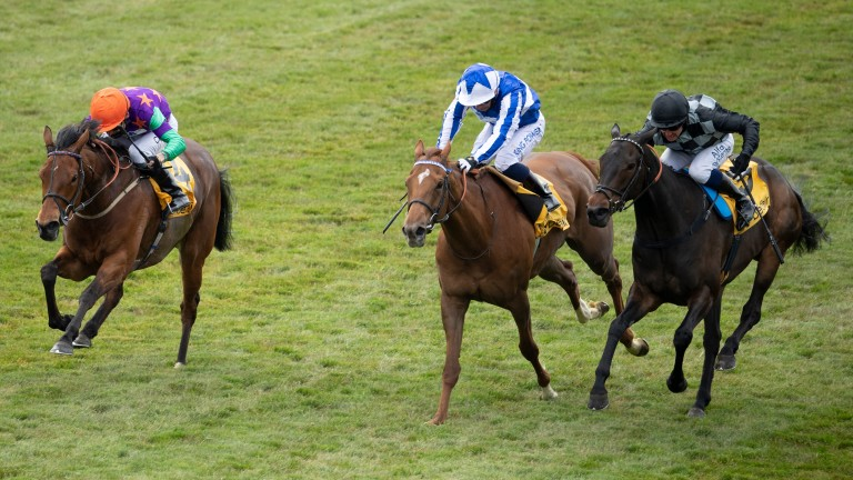Lady Bowthorpe (left) wins the Group 2 Dahlia Stakes at Newmarket from Queen Power and Lavender's Blue (right)