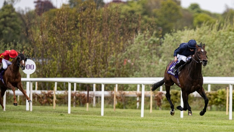 Bolshoi Ballet streaks clear of his rivals at Leopardstown and is now clear favourite for the Cazoo Derby
