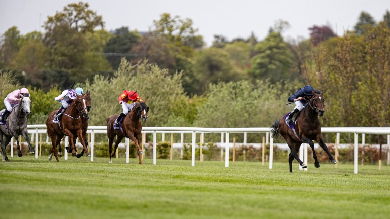 Bolshoi Ballet: stretched clear under Ryan Moore to win the Derrinstown Stud Derby Trial
