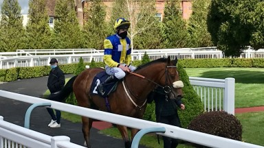 Golden Rainbow and Luke Morris after their win at Lingfield