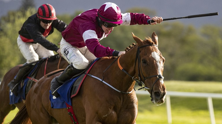 Samcro and Jack Kennedy win the Grade 3 An Riocht Chase at Killarney