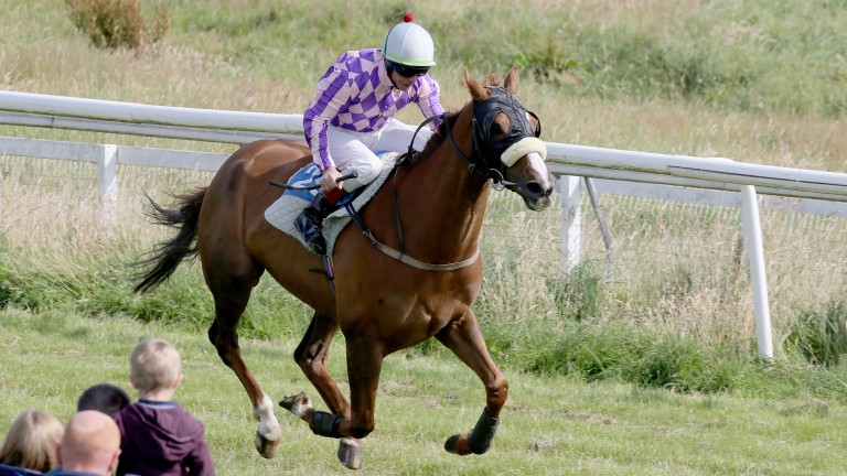 Tyrone Williams rides a flapping winner at Hawick in 2015