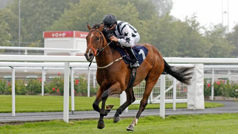 Burning Cash: fast five furlongs should suit says trainer Paul Midgley