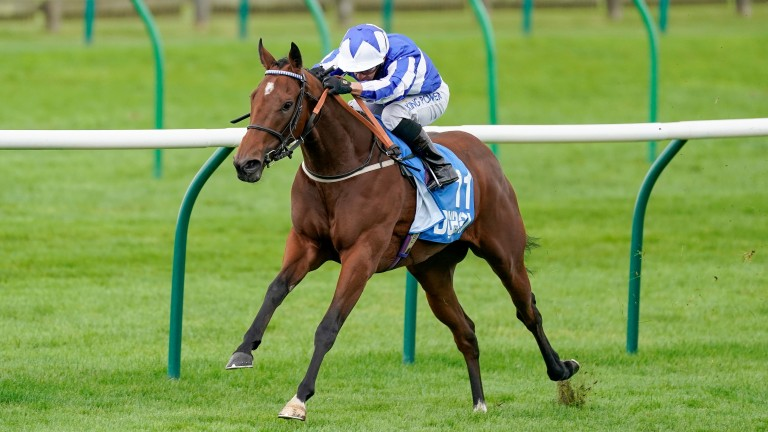 Winter Power: won the Group 3 Cornwallis Stakes at Newmarket in October and wears a first-time tongue-tie at York