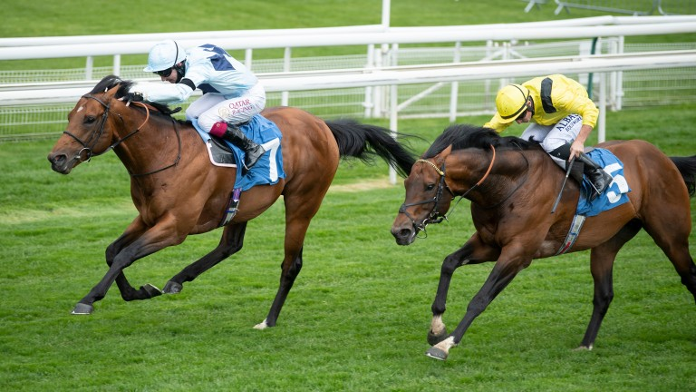 Starman beats Nahaarr in the Duke of York Stakes to raise the prospect of a Royal Ascot tilt