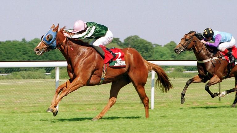 The Trader: classy sprinter for Blanshard
