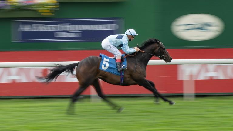 Primo Bacio win the Oaks Farm Stables Fillies' Stakes at York