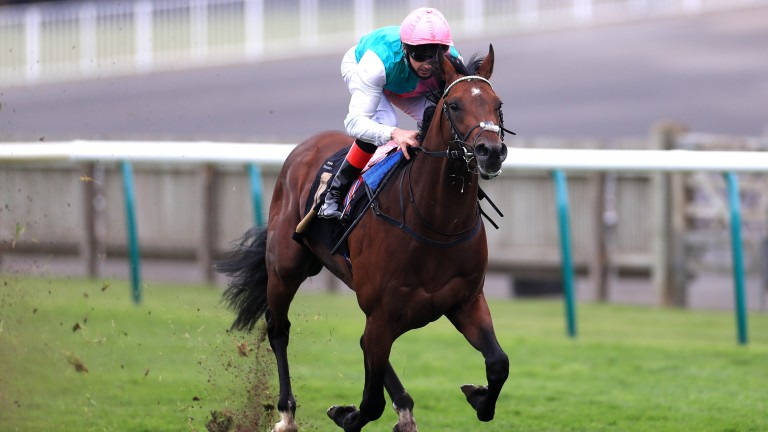 Derab: Sea The Stars half-brother to Enable strikes at Newmarket in an impressive manner