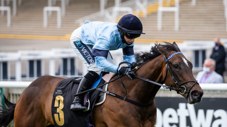Cachet: Aclaim's first winner impressed at Newmarket