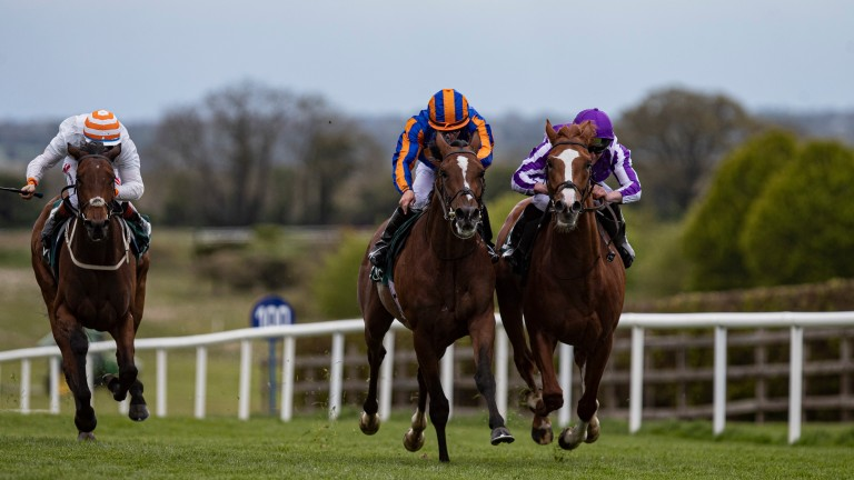 Wordsworth (right) finishes second to stablemate Sir Lucan at Navan