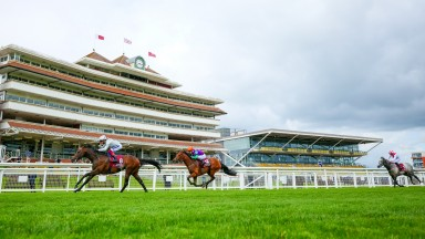 Palace Pier pulls clear from the Lockinge field
