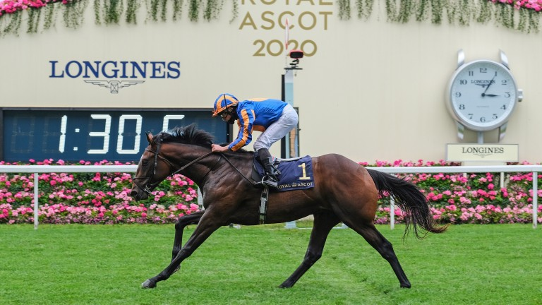 Battleground: Royal Ascot and Vintage Stakes scorer is off to stud