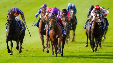 Wembley (left) finishes second to St Mark's Basilica in the 2020 Dewhurst at Newmarket