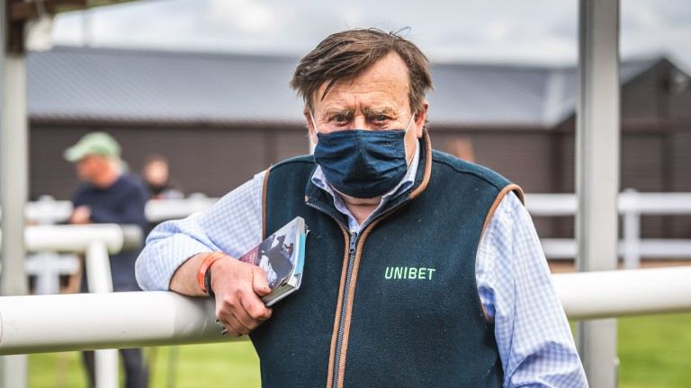 Nicky Henderson: sent a sizeable draft and bought the Bernice Stables-consigned Blue Bresil gelding Constitution Hill (446) for £120,000