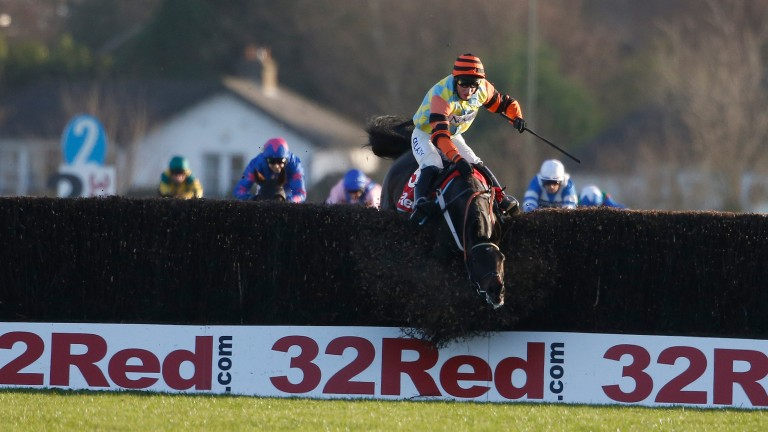 Might Bite crashes out at the last when well clear of his rivals in the Kauto Star Novices' Chase at Kempton in 2016
