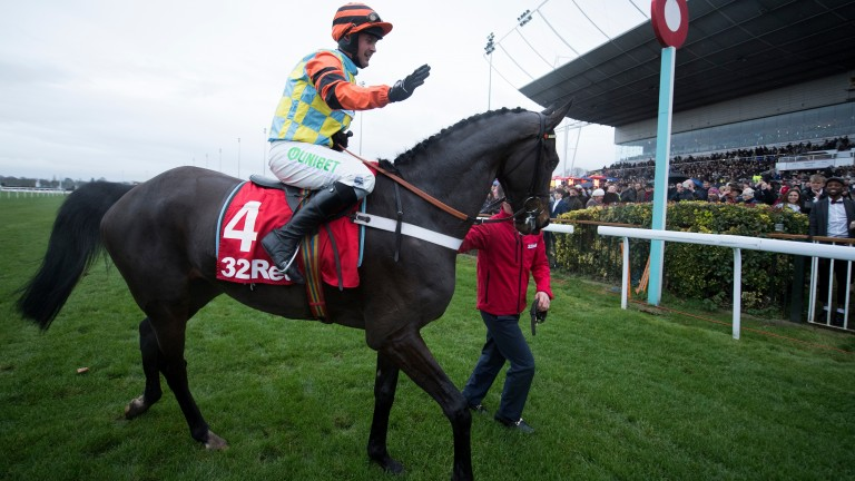 Might Bite parades after winning the 2017 King George VI Chase at Kempton