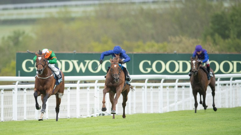 Lone Eagle (leading): 13-2 for the King George at Ascot on Saturday