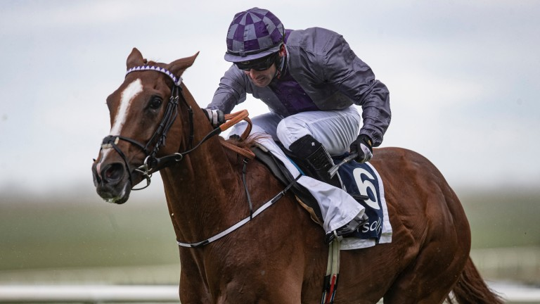 Legal Pomp's better-known half-brother Mac Swiney won the Irish 2,000 Guineas under Rory Cleary