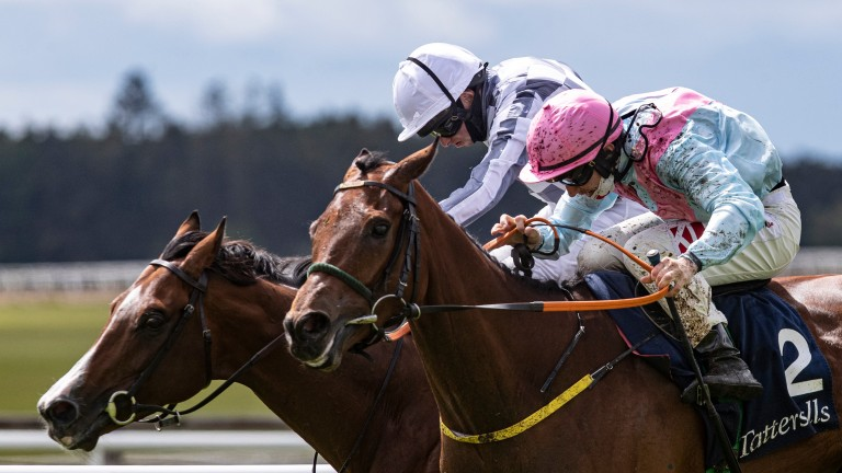 Helvic Dream (right): tough son of Power downs Broome in the Tattersalls Gold Cup