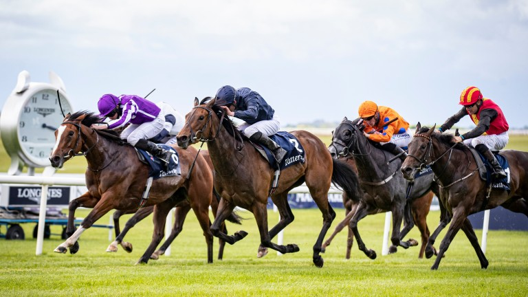 Empress Josephine: daughter of Galileo and sister to the brilliant Minding strikes in the Irish 1,000 Guineas