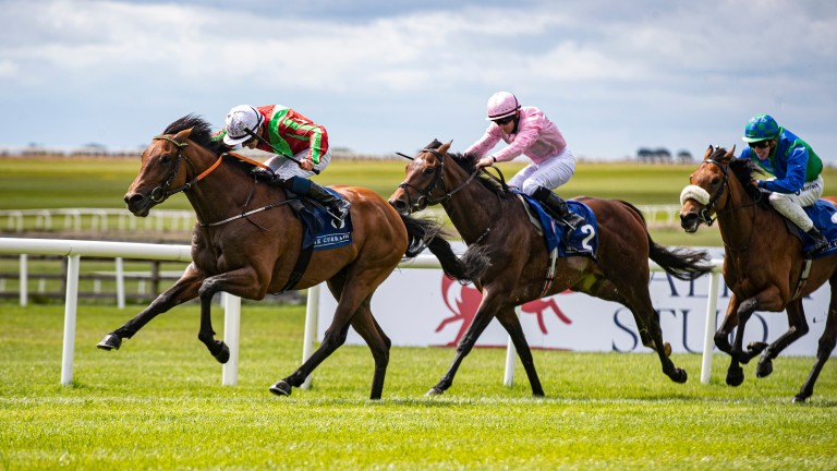 """Johnny Murtagh on Earlswood: """"He has to find a bit of improvement but I'm hopeful the extra trip can bring about improvement"""""""