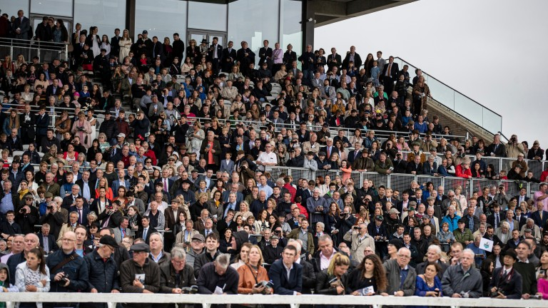 Crowds at the Curragh: home of the Irish Derby could host fans in late June