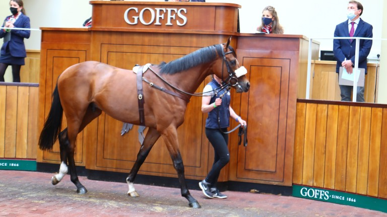 The Dubawi colt out of All At Sea sells for £480,000